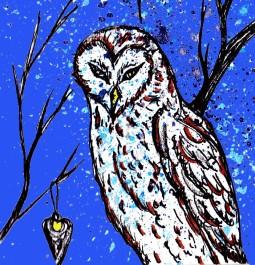 owlcard4